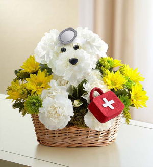 Doggie Houser M.D.™ 3D Get Well in Las Vegas, NV | All In Bloom