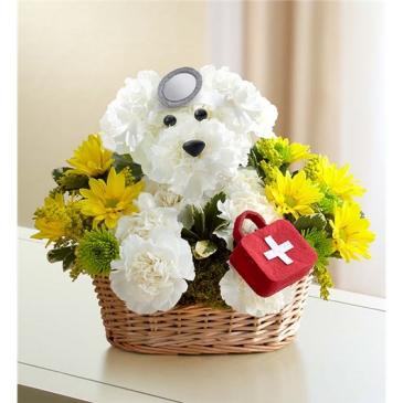 Doggie Howser M.D. sku # 146761