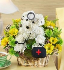 Doggie Howser M.D. a-DOG-able