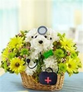 Doggie Howser M.D. Get Well