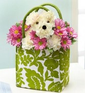 Doggie In Tote Bag Best Gift Delivery In Washington DC