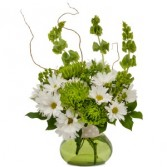 Dots and Daisies Arrangement