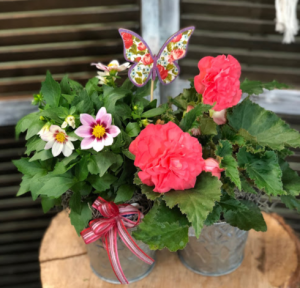 Double Bloom Bucket  in Fairview, OR | QUAD'S GARDEN - Home to Trinette's Floral