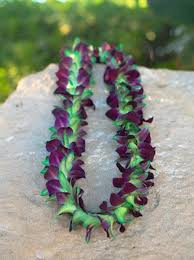 DOUBLE BOMBAY AND GREEN TINT ORCHID LEI GRADUATION LEI