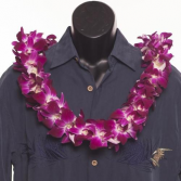 Orchid Lei's on Special 6/2 to 6/5 ** Call today and reserve ** Asst. Colors Availble ***