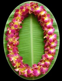 DOUBLE DYED YELLOW ORCHID LEI Graduation Lei
