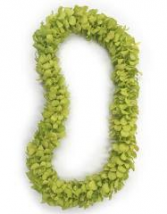 DOUBLE GREEN ORCHID LEI GRADUATION LEI
