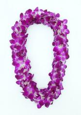 DOUBLE LEI - PURPLE Fresh orchids