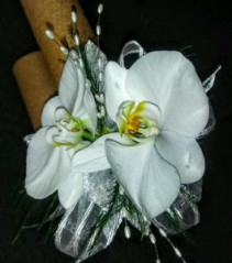 Double Orchid Beauty Orchid Corsage