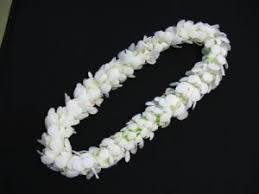 DOUBLE WHITE ORCHID LEI GRADUATION LEI