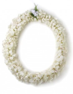 double white orchid lei lei