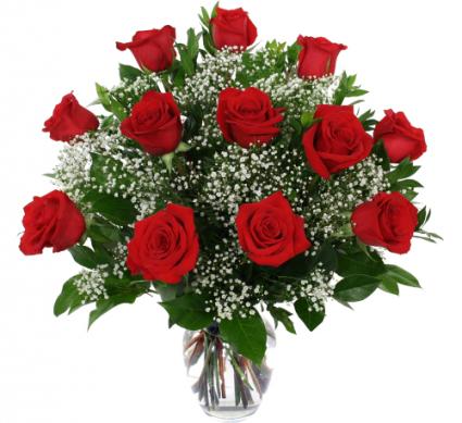 Doz red roses vase