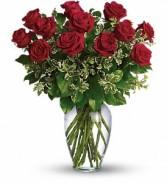 DOZ RED ROSES Vase Arrangement