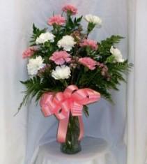 Dozen Carnations Fresh