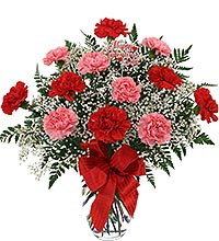 Dozen Carnations in Vase