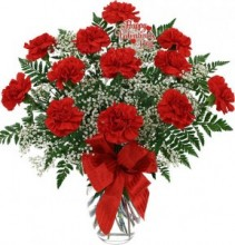 Dozen Red Carnations   arranged in vase with babies breath, greens