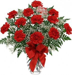 Dozen Red Carnations   arranged in vase with babies breath, greens in Lebanon, NH | LEBANON GARDEN OF EDEN FLORAL SHOP