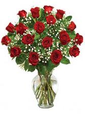 Dozen & Half Red Roses
