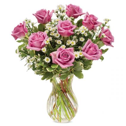 Dozen Lavender Roses Everyday