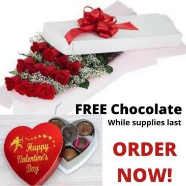 Dozen long Stem Roses + FREE Chocolate