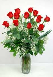 Dozen Long Stem Premium Roses Roses