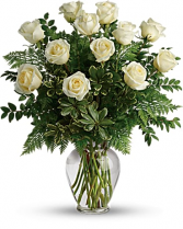 Dozen long stem white roses Every day