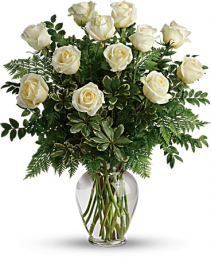 Dozen long stem white roses valentines