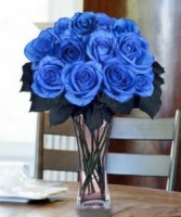 Dozen Long Stemmed Blue Roses