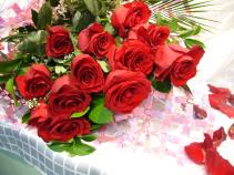 DOZEN LONG STEMMED PREMIUM ROSES Wrapped Bouquet