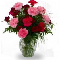 Dozen Mixed Carnations in Vase  MIxed colors,*  colors may vary