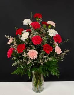 dozen of carnations floral arrangement in Sentinel, OK | JJ GIFT SHOP