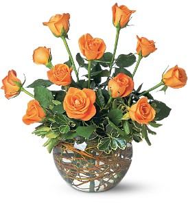 Dozen Orange Rose