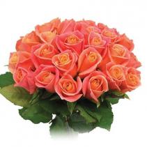 dozen orange roses wrapped arrangement