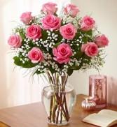 12 PINK ROSES    Long Stem Roses