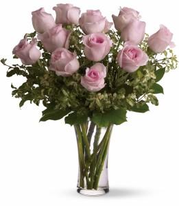 Dozen Pink Roses H12Z107A