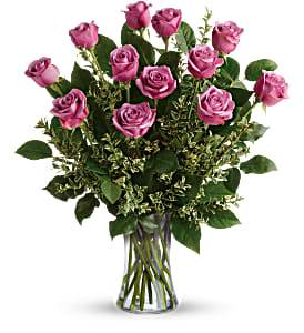 Roses 12 Lavender   T68-1 Roses