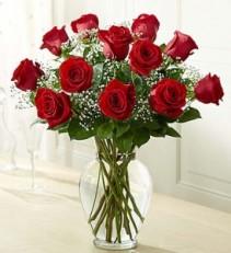 Dozen Premium  Long Stem Roses