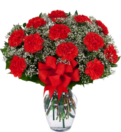 Dozen Red Carnations In Hesperia Ca Acacia S Country Florist