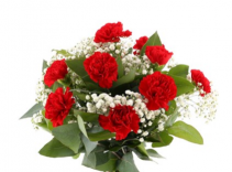 Dozen Red Carnations Vase