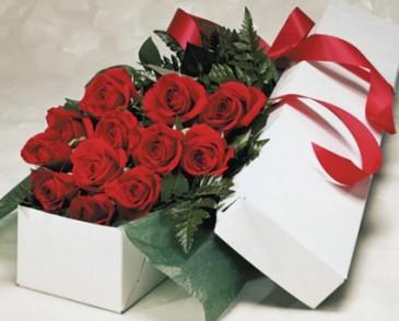 Dozen roses gift boxed in edmonton ab janices grower direct dozen roses gift boxed negle Choice Image