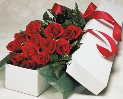 Dozen Roses Gift Boxed In Edmonton Ab Janice S Grower