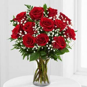 Dozen Red Roses  in Coconut Grove, FL | Luxury Flowers
