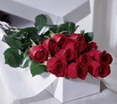 Dozen Red Roses in Box Red Roses