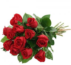 Dozen Red Roses - NO VASE Flower Arrangement in Richmond, VT | CRIMSON POPPY FLOWER SHOP