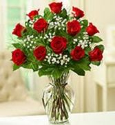 Dozen Red Roses Rose Arrangement