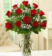 Dozen Red Roses Rose Arrangement