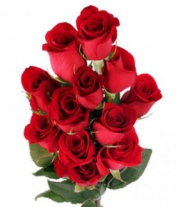 Dozen Rose Cash and Carry Not Available for Delivery