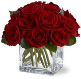 Dozen Rose Contempo Flowers Rose Arrangement