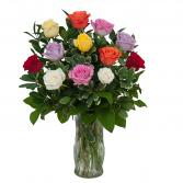 Dozen Multi Color Roses  Arrangement