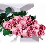 Dozen Roses Colour bouquet